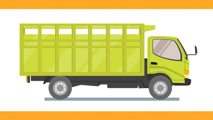 משאית בצבע צהוב